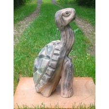obrázek Želvička